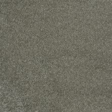 Shaw Floors Fusion Sd Builder Ultimate Yield Aluminum 00530_PS693