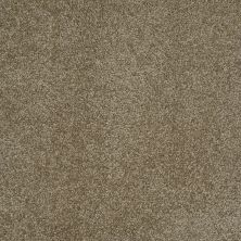 Shaw Floors Fusion Sd Builder Ultimate Yield Cocoa 00732_PS693