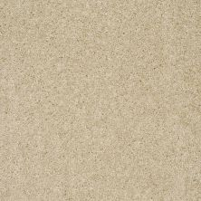 Shaw Floors Property Solutions Tailored Elegance Bermuda Sand 26104_PS726
