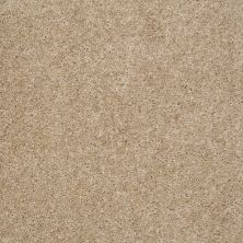 Shaw Floors Property Solutions Tailored Elegance Antique Glaze 26710_PS726