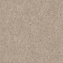Shaw Floors Property Solutions Eco Beauty II Raw Silk 00103_PS785