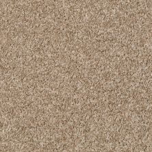 Shaw Floors Property Solutions Eco Beauty II Khaki 00711_PS785