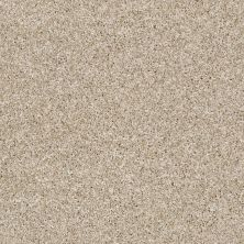 Shaw Floors Multifamily Eclipse Plus Commanding Tweed Creamy Silk 00100_PS806