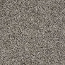 Shaw Floors Multifamily Eclipse Plus Commanding Tweed Burnt Ash 00500_PS806