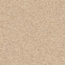 Shaw Floors Multifamily Eclipse Plus Commanding Solid Desert Sand 00210_PS807