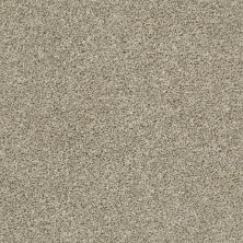 Shaw Floors Multifamily Eclipse Plus Commanding Tonal Stucco 00112_PS808