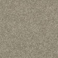 Shaw Floors Multifamily Eclipse Plus Commanding Tonal Owl 00121_PS808