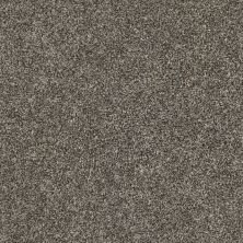 Shaw Floors Multifamily Eclipse Plus Commanding Tonal Hammerhead 00521_PS808