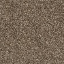 Shaw Floors Multifamily Eclipse Plus Commanding Tonal Rodeo 00710_PS808