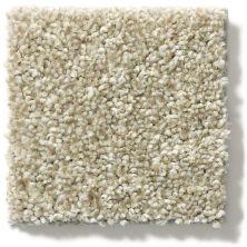 Shaw Floors Property Solutions Specified Presidio Tonal Wheat Field 00142_PZ026