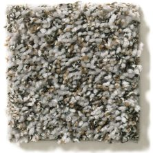 Shaw Floors Property Solutions Specified Venture Berber Fossil 00531_PZ054