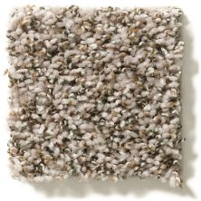 Shaw Floors Property Solutions Specified Venture Berber Toast 00730_PZ054