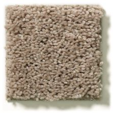 Shaw Floors Property Solutions Specified Venture Solid Wheat Field 00102_PZ055