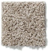Shaw Floors Property Solutions Specified Venture Solid Soft Taupe 00501_PZ055