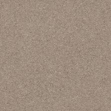 Shaw Floors Appel Pebble Path 101S_PZ059