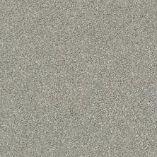 Shaw Floors Appel Clay 122T_PZ059