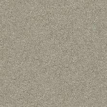 Shaw Floors Appel Winter Dunes 123T_PZ059