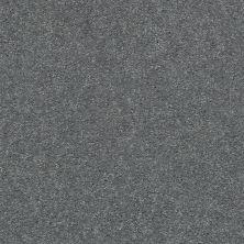 Shaw Floors Appel Slate 501S_PZ059