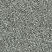 Shaw Floors Appel Arctic Shadow 521T_PZ059