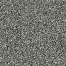 Shaw Floors Appel Cedar Ridge 721T_PZ059
