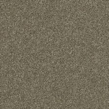 Shaw Floors Appel Fox Hollow 722T_PZ059
