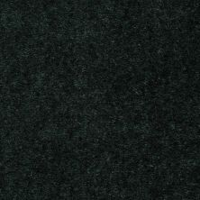 Shaw Floors Queen Bandit Irish Velvet 27331_Q0027