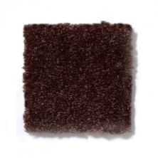 Shaw Floors Queen Patcraft Yukon Chocolate Brown 27742_Q0028