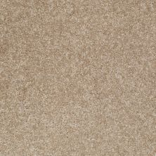 Shaw Floors Queen Roadster Tomorrow's Taupe 00726_Q0993