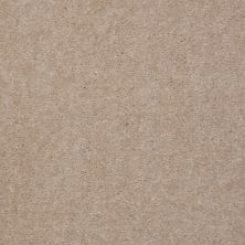 Shaw Floors Bandit II Gorgeous Ivory 00129_Q1386