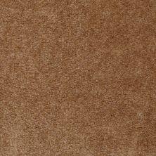 Shaw Floors Bandit II Equestrian Gold 00211_Q1386