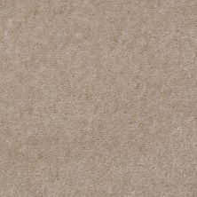 Shaw Floors Bandit II Antique Taupe 00730_Q1386