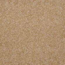 Shaw Floors SFA Resolution Goldsmith 00260_Q1834