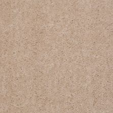 Shaw Floors Queen Zipp Carmel Dust 00161_Q1861