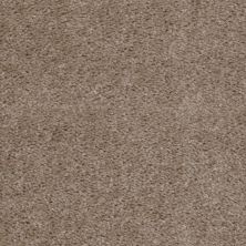 Shaw Floors Queen Zipp Brown Derby 00760_Q1861