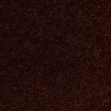 Shaw Floors Shaw Design Center Ballina Tawny Suede 00761_Q1863