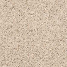 Shaw Floors Shaw Flooring Gallery Gibson Custard 00104_Q259G