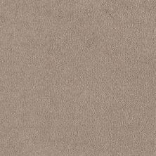 Shaw Floors Shaw Flooring Gallery Truly Modern I 12′ Oatmeal 00104_Q263G