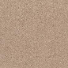 Shaw Floors Shaw Flooring Gallery Truly Modern I 12′ Cashew 00106_Q263G