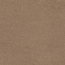 Shaw Floors Shaw Flooring Gallery Truly Modern I 12′ Adobe 00108_Q263G