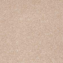 Shaw Floors Shaw Flooring Gallery Truly Modern I 12′ Stucco 00110_Q263G