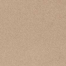 Shaw Floors Shaw Flooring Gallery Truly Modern I 12′ Almond Flake 00200_Q263G