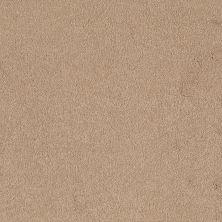 Shaw Floors Shaw Flooring Gallery Truly Modern I 12′ Marzipan 00201_Q263G