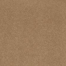 Shaw Floors Shaw Flooring Gallery Truly Modern I 12′ Cornfield 00202_Q263G