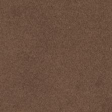 Shaw Floors Shaw Flooring Gallery Truly Modern I 12′ Tuscany 00204_Q263G