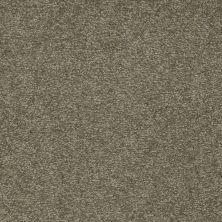 Shaw Floors Shaw Flooring Gallery Truly Modern I 12′ Alpine Fern 00305_Q263G