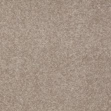 Shaw Floors Shaw Flooring Gallery Truly Modern I 12′ Chinchilla 00306_Q263G