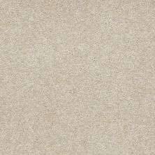 Shaw Floors Shaw Flooring Gallery Truly Modern I 12′ Country Haze 00307_Q263G