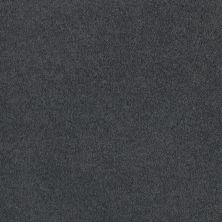 Shaw Floors Shaw Flooring Gallery Truly Modern I 12′ Cadet 00401_Q263G