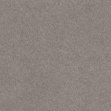 Shaw Floors Shaw Flooring Gallery Truly Modern I 12′ Silver Charm 00500_Q263G