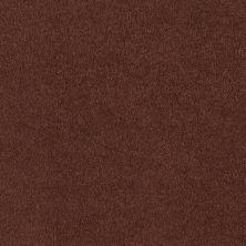 Shaw Floors Shaw Flooring Gallery Truly Modern I 12′ Spanish Tile 00601_Q263G